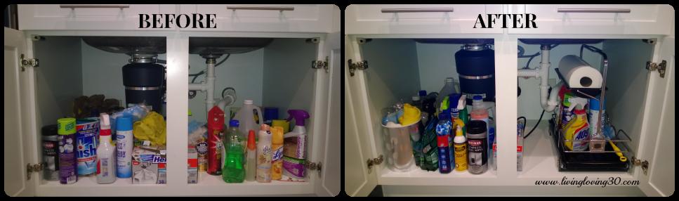 Organization Project: Under-the-Kitchen-Sink Storage